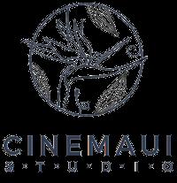 Maui Videography